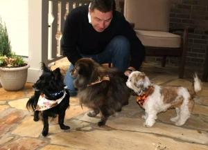 Pets Rescue Hotel