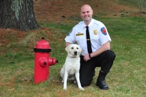 Allie arson dog
